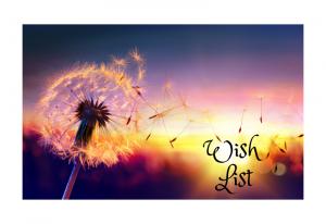 <br />Wish List